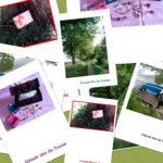 Urkunden_Collage
